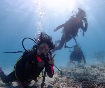 体験ダイビング 石垣
