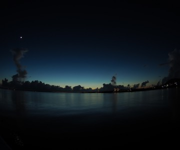 石垣島ナイトダイビング