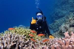 サンゴと熱帯魚と香港美人♪