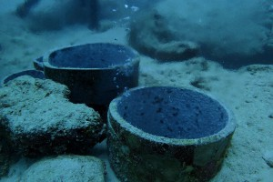 シメはラーメンではなく、温泉で(。-`ω-)ケンコウイチバン