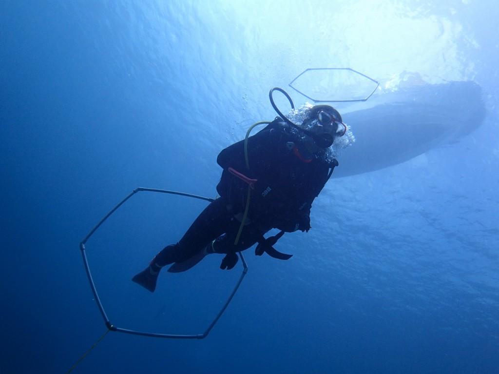 G diving石垣島ではAOWにPPBを必ず入れてます。