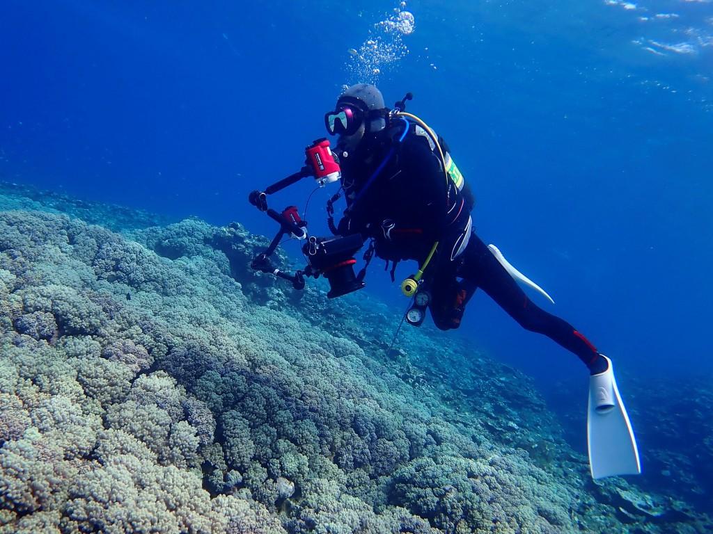 ぉおー サンゴと海とTさん!