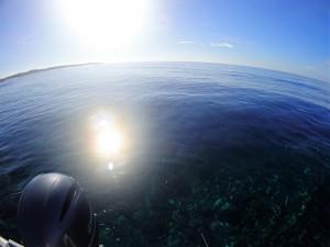 G diving石垣島